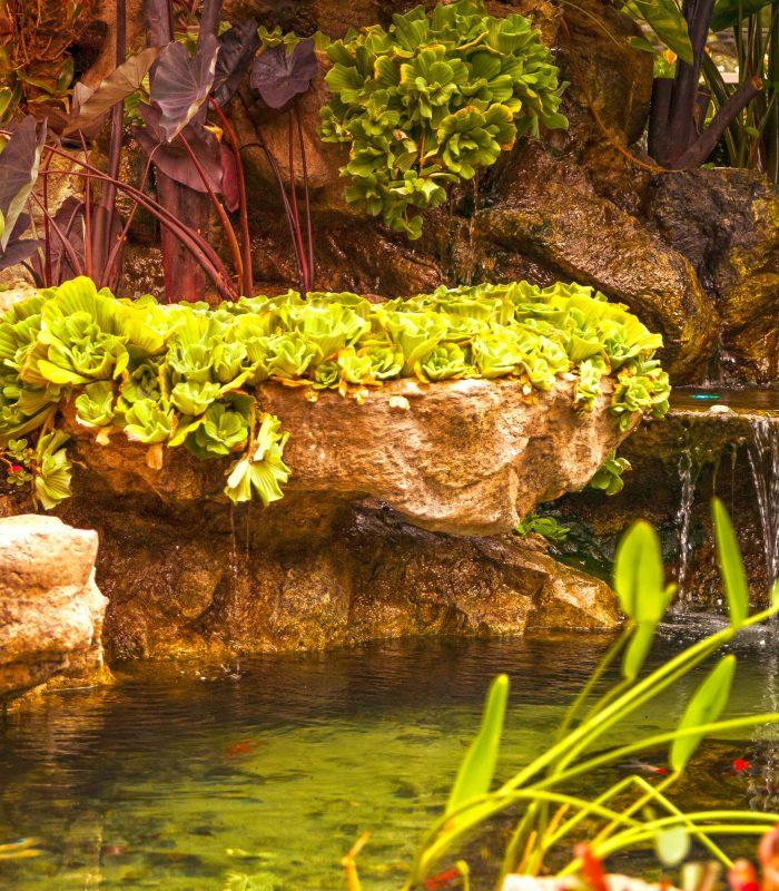 Lago São Bernardo 12_foto Baobá Art